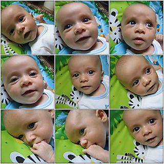 Newbornmosaic